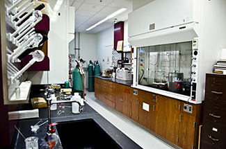 a faculty member's lab